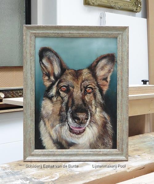 Portret van een herder